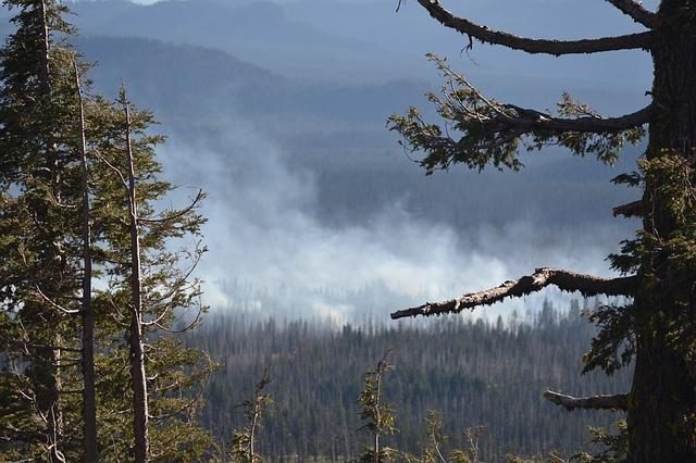 Tips To Breathe Easy This Wildfire Season